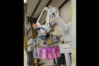 QComp Robotic Bag Palletizer 5